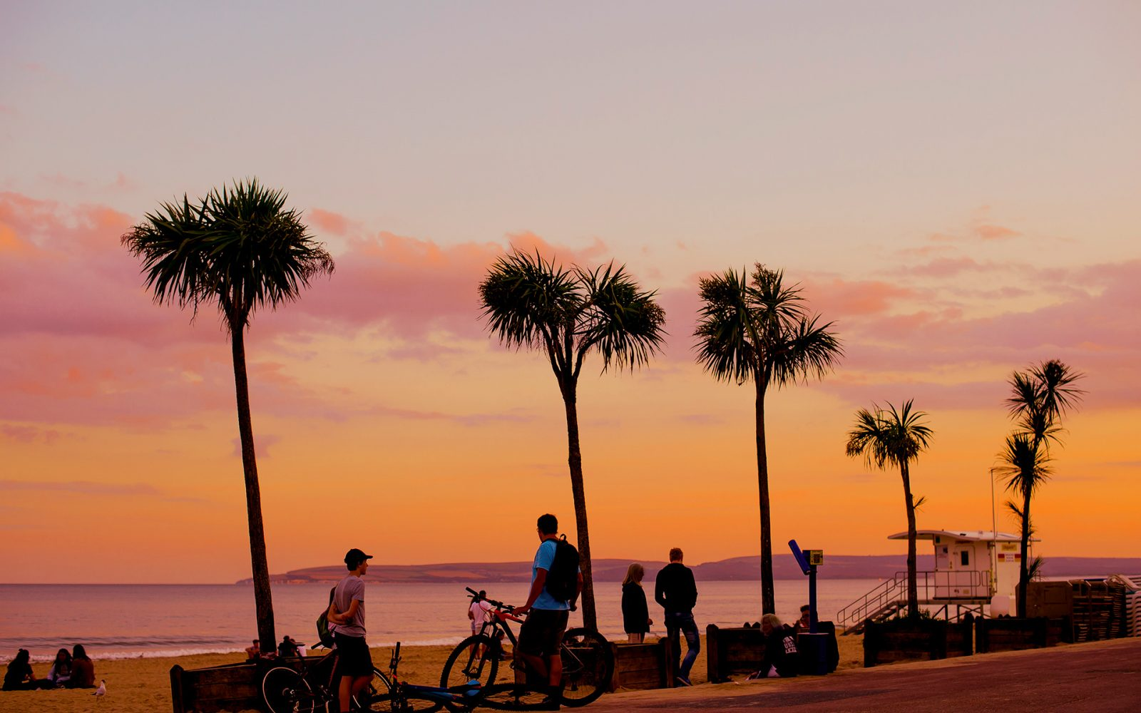 California style orange sky and palm tree's on Bournemouth seafront