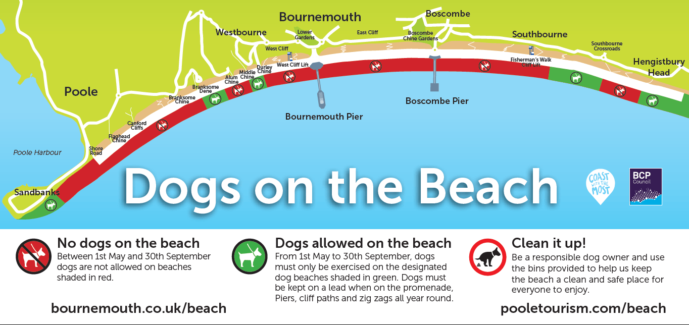 Dog Friendly Beaches Map